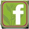 facebookbutton_NGC
