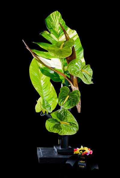 03f_Flower Show Chair Award-Greer Underwood