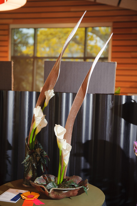 Section D - For The Birds / Courting / Flower Show Chair Award - Sudie Minamyer