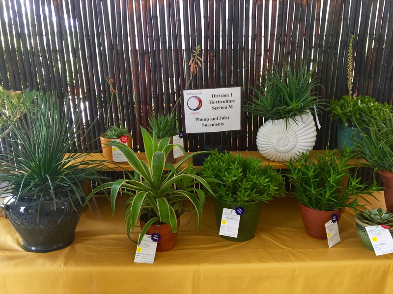 Horticulture 4
