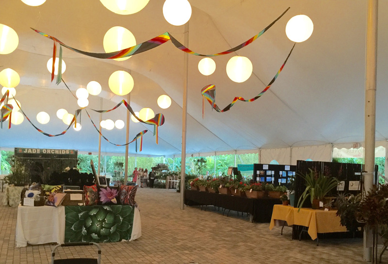 View of Tent