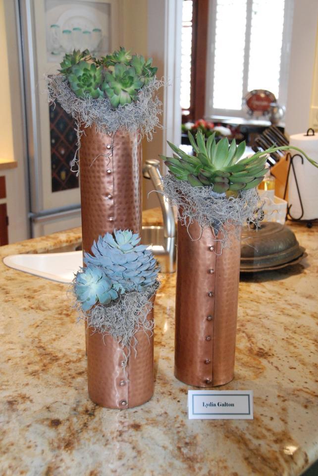 hgt12-2-lydias-succulents
