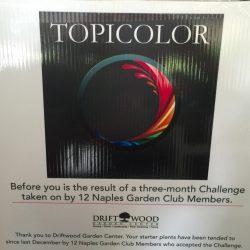 Member's Challenge
