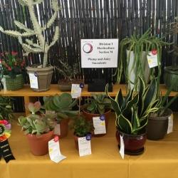 Horticulture 5