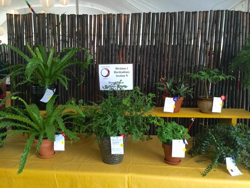 Horticulture 1
