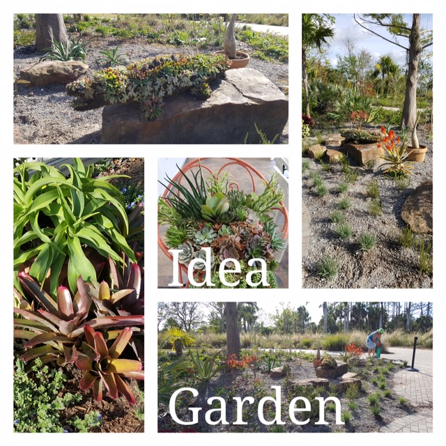 Idea Garden Update